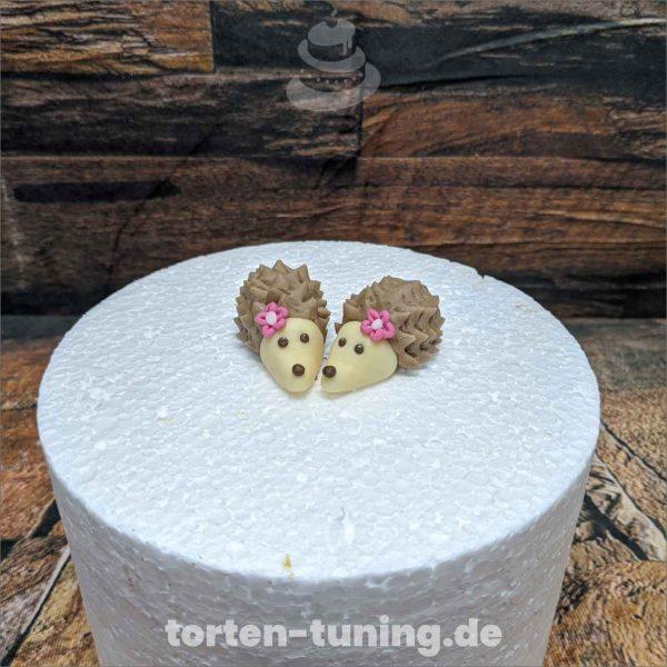 Igel modellierte Figur Fondantfigur Tortenfigur Torte Torten Tuning Geburtstagstorte Suhl Hochzeitstorte Kindertorten Babytorten Fondant online