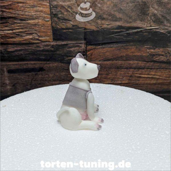 Pitbull Hund modellierte Figur Fondantfigur Tortenfigur Torte Torten Tuning Geburtstagstorte Suhl Hochzeitstorte Kindertorten Babytorten Fondant online