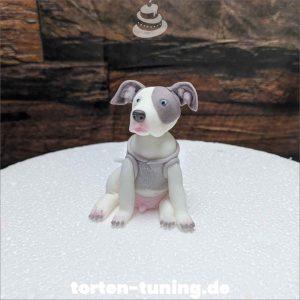 Tortenfigur Pitbull Terrier Hund Tortenfigur Pitbull Terrier Hund Pitbull Terrier modellierte Figur Fondantfigur Tortenfigur Torte Torten Tuning Geburtstagstorte Suhl Hochzeitstorte Kindertorten Babytorten Fondant online