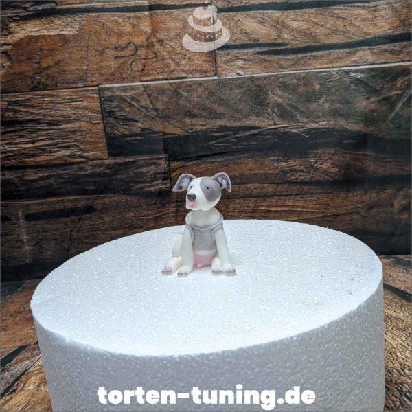 Pitbull modellierte Figur Fondantfigur Tortenfigur Torte Torten Tuning Geburtstagstorte Suhl Hochzeitstorte Kindertorten Babytorten Fondant online