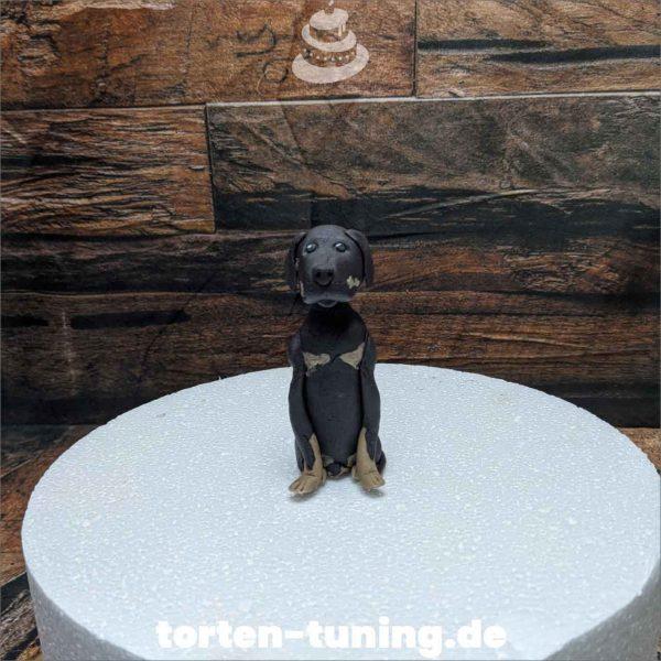 Rottweiler modellierte Figur Fondantfigur Tortenfigur Torte Torten Tuning Geburtstagstorte Suhl Hochzeitstorte Kindertorten Babytorten Fondant online