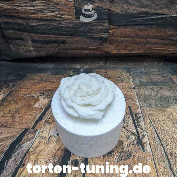 rose modellierte Figur Fondantfigur Tortenfigur Torte Torten Tuning Geburtstagstorte Suhl Hochzeitstorte Kindertorten Babytorten Fondant online