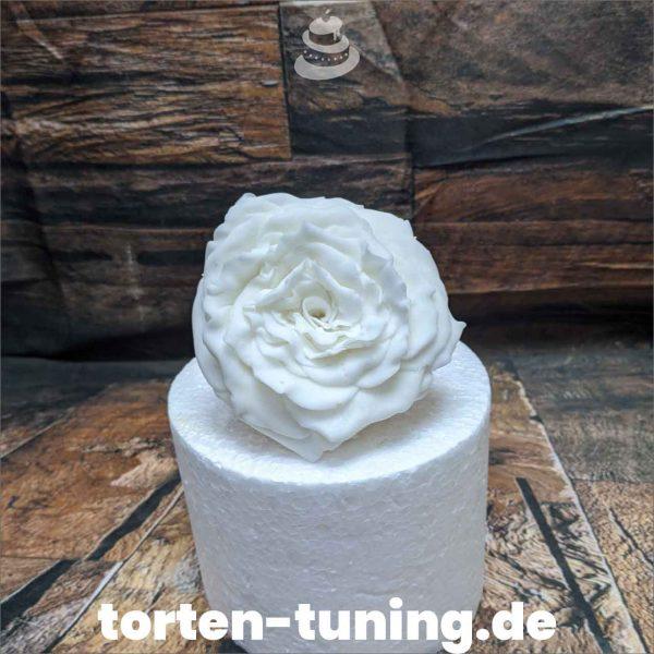 rose weiß modellierte Figur Fondantfigur Tortenfigur Torte Torten Tuning Geburtstagstorte Suhl Hochzeitstorte Kindertorten Babytorten Fondant online